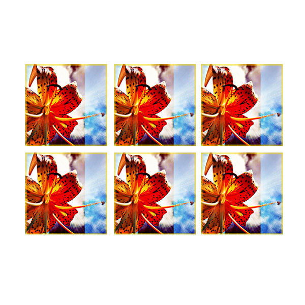 Leaf Designs Hibiscus Coasters - Set Of 6