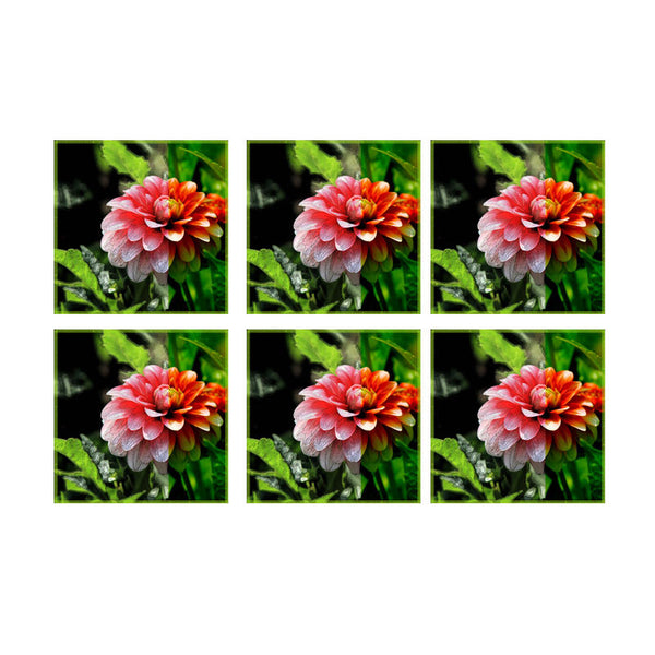 Leaf Designs Red Dahlia Coasters - Set Of 6