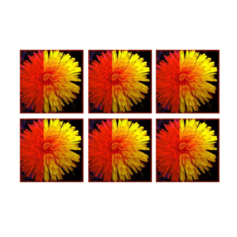 Leaf Designs Orange & Yellow Floral Coasters - Set Of 6