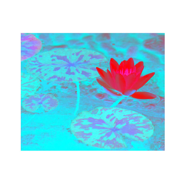 Leaf Designs Pink & Light Blue Lotus Poster