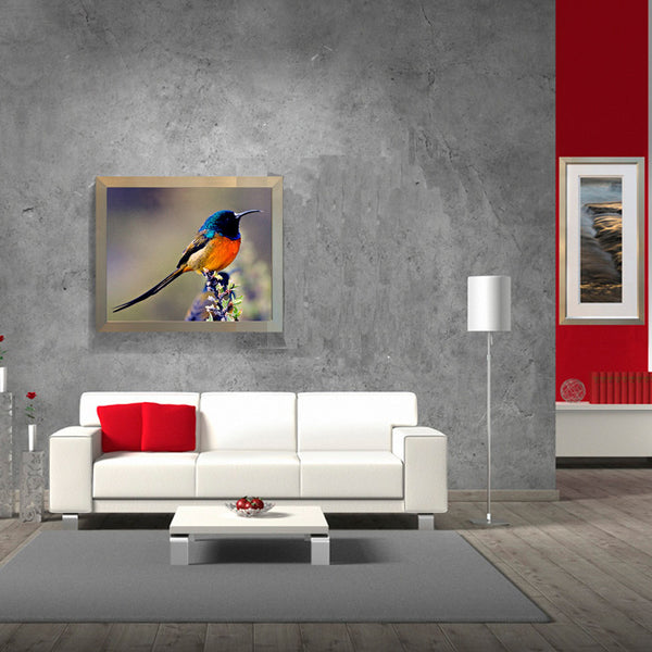 Leaf Designs Blue & Orange Bird Poster