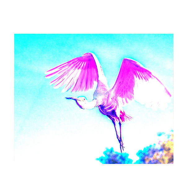Leaf Designs Pink & Blue Flying Bird Poster