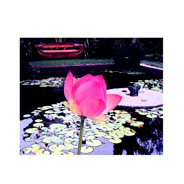 Leaf Designs Light Pink Lotus Poster