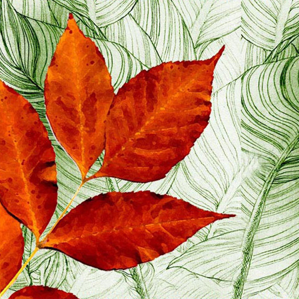 Leaf Designs Red & Light Green Table Mat - Set Of 6