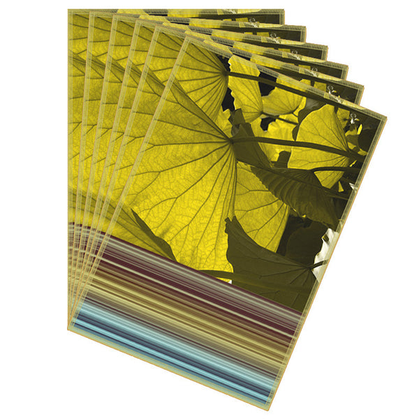 Leaf Designs Blue & Yellow Flowery Fabric Table Mats - Set Of 6
