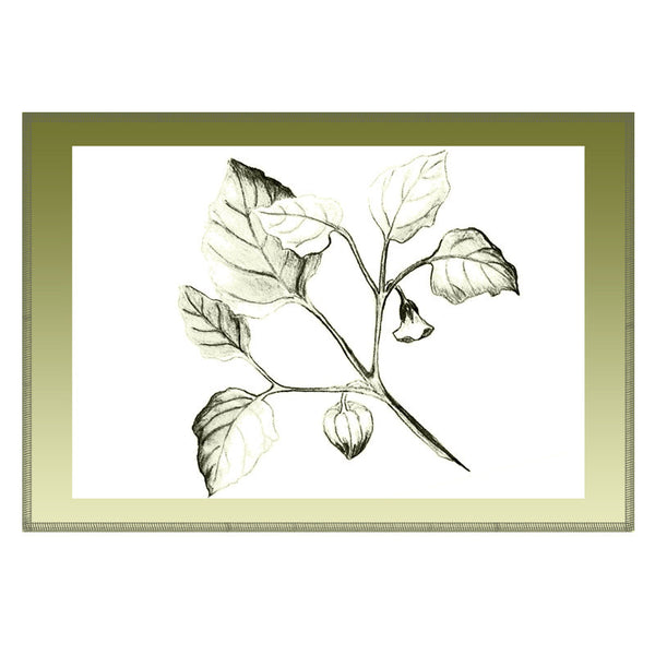 Leaf Designs Olive Shaded Border Floral Table Mat - Set Of 6