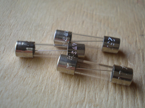 20MM Anti surge fuses various ratings