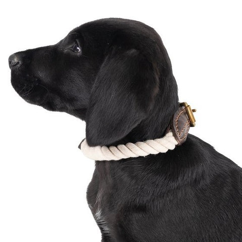 Leather & Rope Collar | Natural