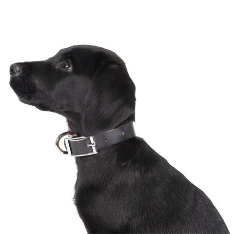 Genuine Black Leather Collar | Extra Small