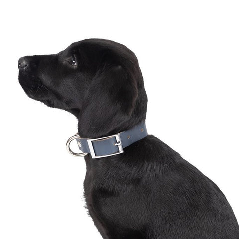 Genuine Leather Collar | Navy