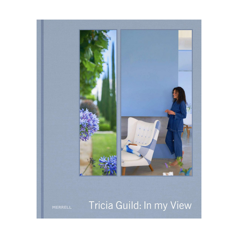 In My View | Tricia Guild
