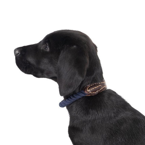 Leather & Rope  Collar | Navy