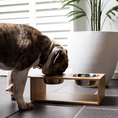 Feeding station | Bamboo & Stainless Steel