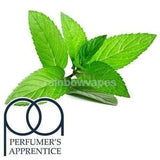 Flavour Apprentice Peppermint Flavoured Flavour Apprentice Liquid concentrate - rainbowvapes