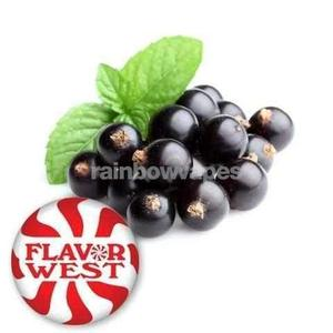 Blackcurrant Flavour Concentrate by Flavorwest