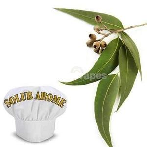 eucalyptus Solub Arome flavour concentrate