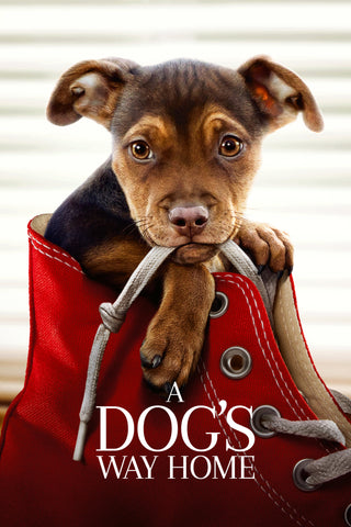 A Dog's Way Home (Vudu HDX) - Pre-Release: Multiple Options Available