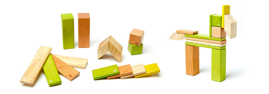 Magnetic Wooden Block Sets