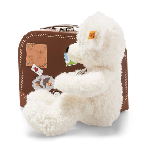 Teddy Bear in a Suitcase