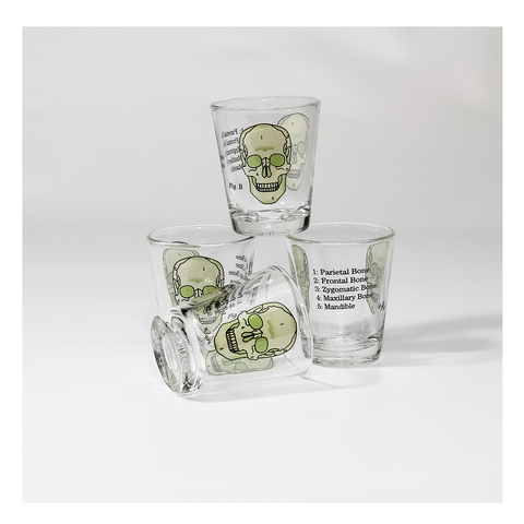 Anatomical Shot Glasses - Set of 4