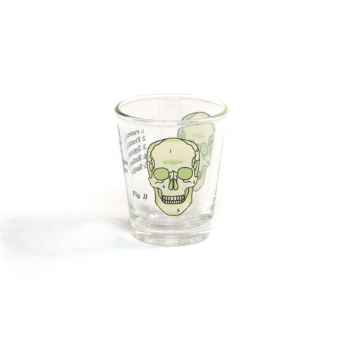 Skull Mini Glass Set of 4