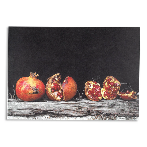 Olivia Parker Notecard - Pomegranates on Cookhouse Ledge