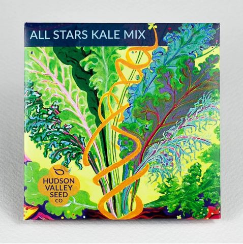 All Stars Kale Seeds - Art Seed Packs