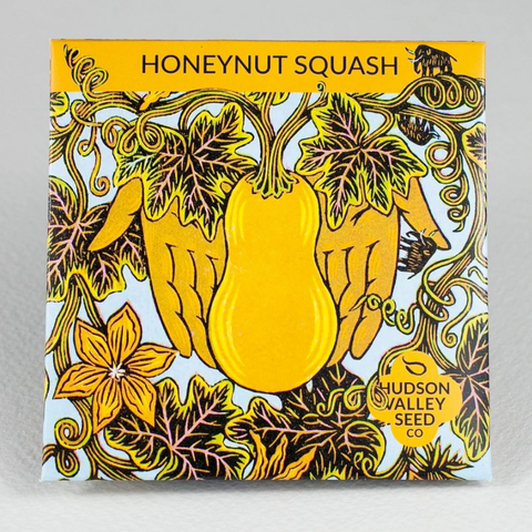 Honeynut Squash Seeds - Art Seed Packs