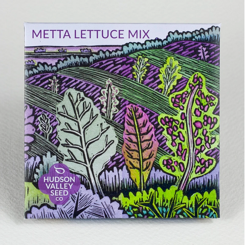 Metta Lettuce Mix Organic Seeds - Art Seed Packs