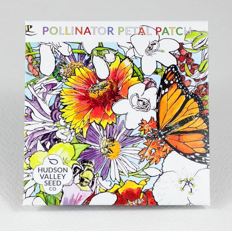 Pollinator Petal Patch Seeds - Art Seed Packs