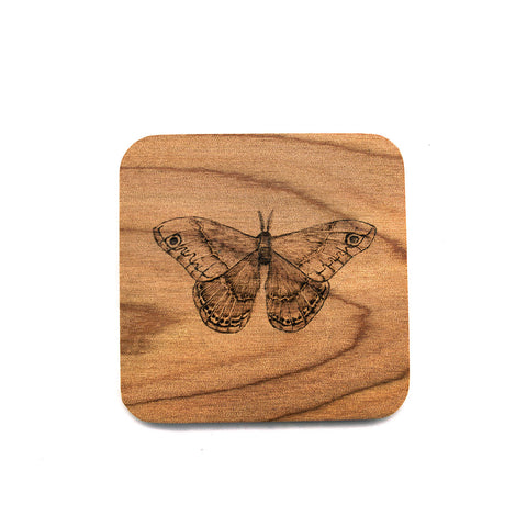 Moth Wood Burned Coaster