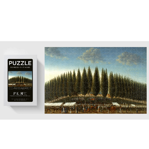 Salem Common on Training Day PEM Puzzle - 300 Pieces