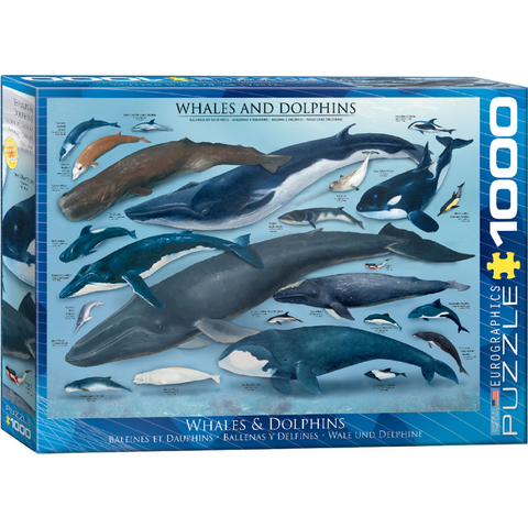 Whales and Dolphins - 1000 Piece Puzzle