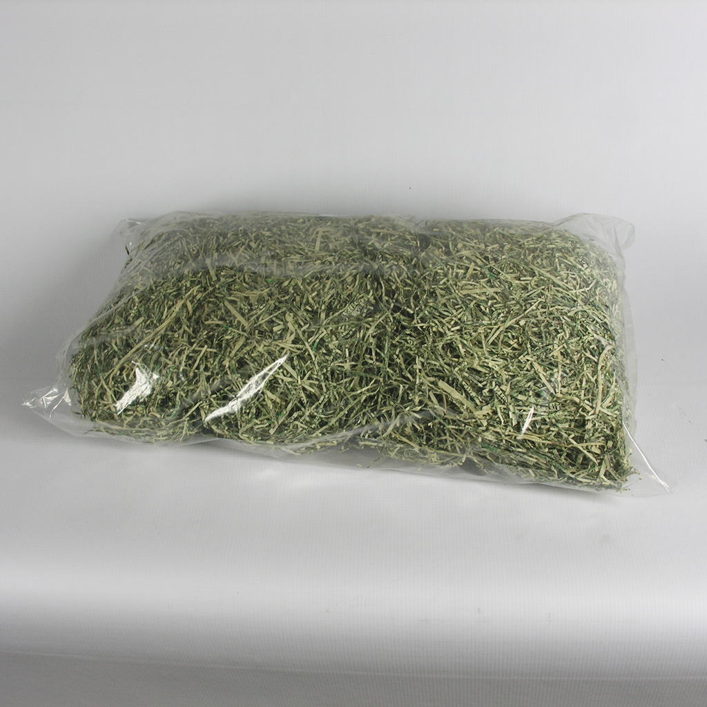 1-Pound Bag of Actual Shredded Money - Each*
