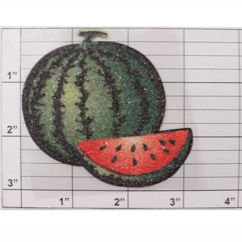 Texured glitter watermelon applique