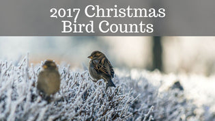 2017-christmas-bird-counts