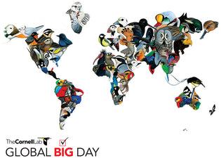 global-big-day-logo