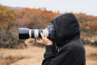 Position, Focus and Other Bird Watching Photography Tips