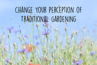 change-your-perception-of-traditional-gardening