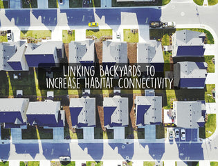 linking-backyards-to-create-habitat-connectivity