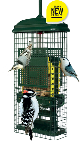 squirrel-buster-suet-feeder