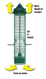Squirrel Buster Classic Patented Seed Tube Ventilation