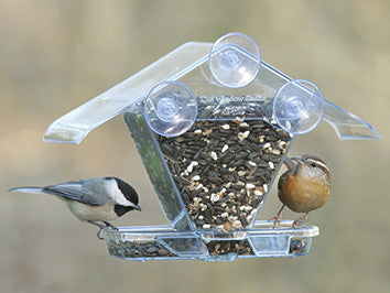 Watch your favorite birds up close with the Window Cafe