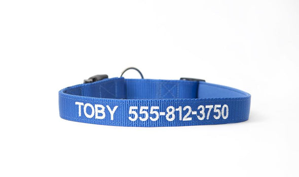 Personalized Dog Collars - Extra Small / Blue - Qualtry