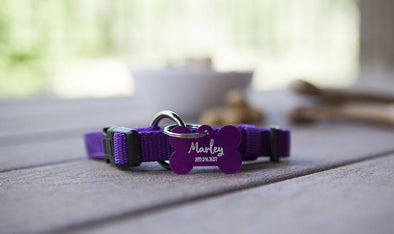 Personalized Small Pet Tags -  - Qualtry