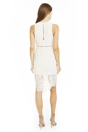 ASTR - Caroline Lace Dress