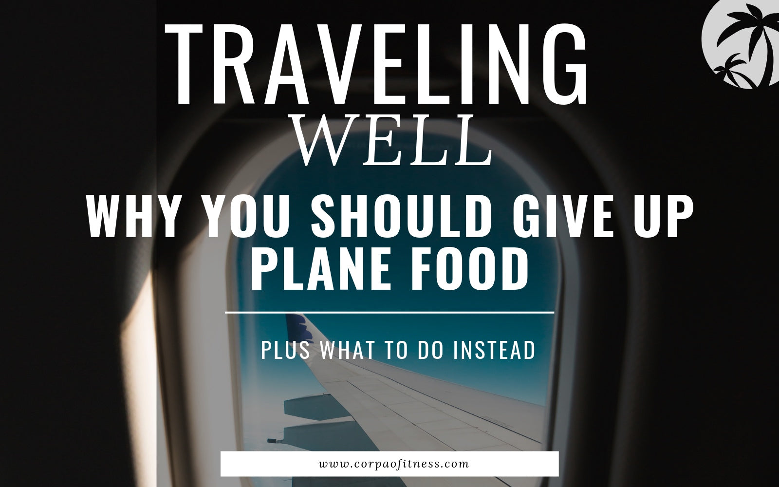 Healthy Travel Tips | Why you Should Give up Plane Food