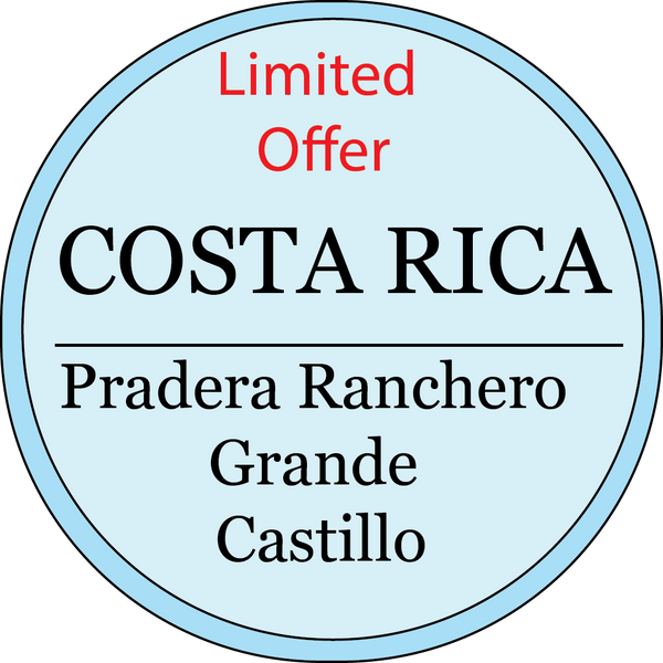 LIMITED EDITION Costa Rica | Castillo  | Light Roast