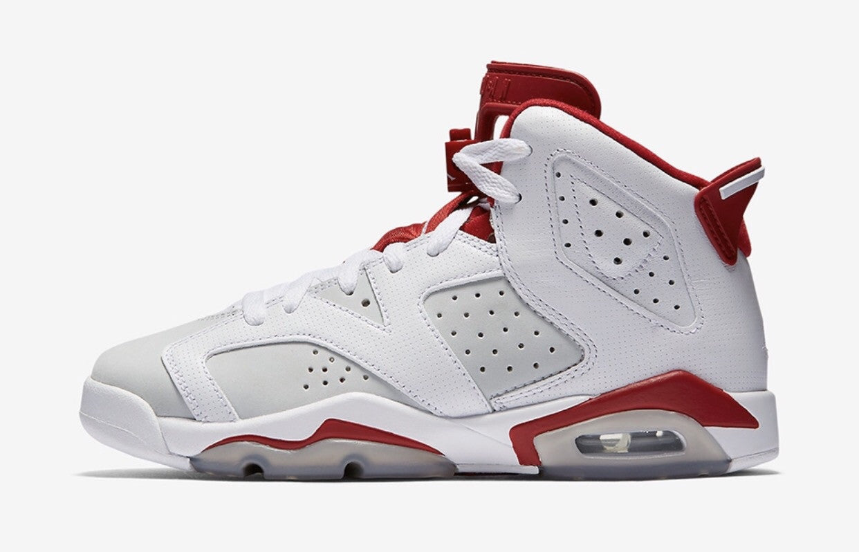 Air Jordan 6 Retro 'Alternate 91' GS