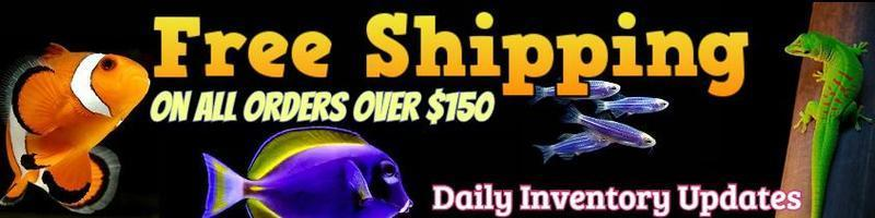 Special offers from www.YourFishStore.com